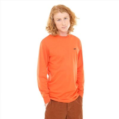 Vans Skate Long Sleeve Tee
